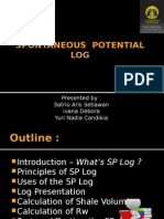 Spontaneous Potential Log