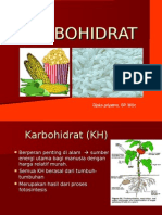 3-KARBOHIDRAT tataboga
