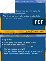 Skeletal-Muscular-And-Integumentary-Systems-Section-3-Bellringer-Alternately.ppt