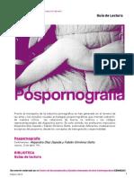 Guia de Lectura Pospornografia