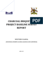 Charcoal Briquettes Project Baseline Survey Report
