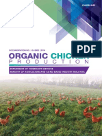 Organic Chiicken Production 23_10 (6)