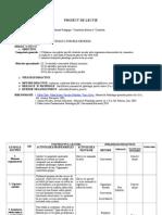 Proiect de Lectie-Procesele Si Formele Memoriei