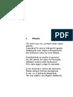 A2. Plante