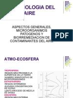 Microbiologia del aire.ppt