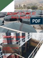 aquaculture at rias baixas5