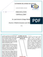 GRANULOMA-LARAHERNÃ-NDEZ-3°1