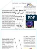 LINFOCITOS T 2-LARAHERNÃ-NDEZ-3°1