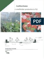 Anthuriums Manual Fiji