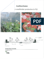 Anthuriums Manual Fiji
