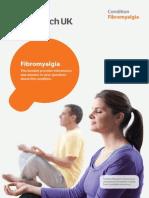 2013 Fibromyalgia