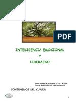1 Inteligencia Emocional y Liderazgo