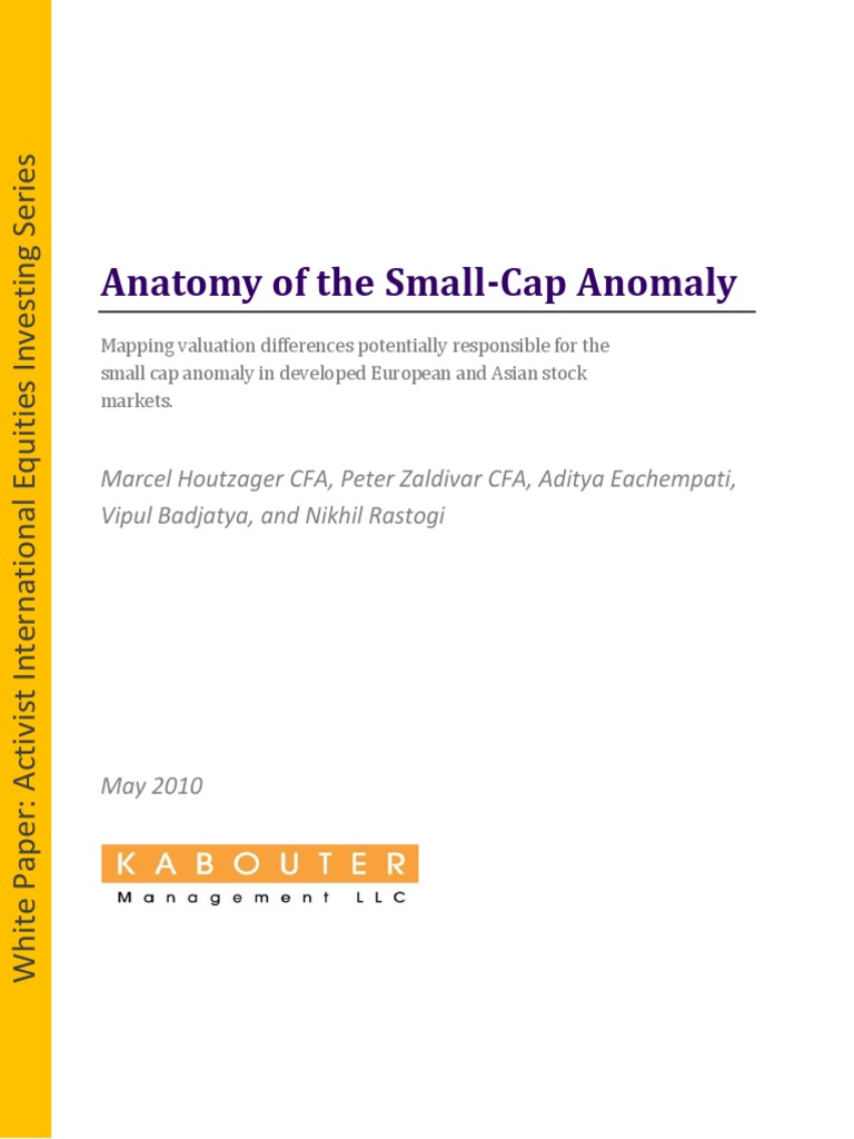 Anatomy of the small cap anomaly euro securities finance