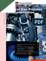 Natural Gas Process Instrumentation