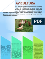Gallinas 150316155321 Conversion Gate01