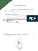 Biomecánica Del Parto - J. Fernández Godoy