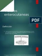 Fístulas enterocutaneas