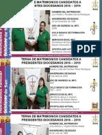 Terna PD 2016-2019
