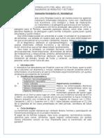 Monografías Parasitología
