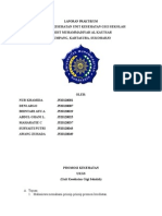 laporan promkes