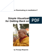 Thrangu Rinpoche Visualizations for Getting Back on Track