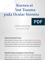 Abrasi Kornea Post Trauma Case 2