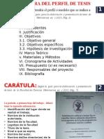 Perfil de Tesis Veterinaria