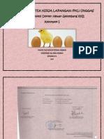 Proposal PKL Unggas Sub.Kel I.pdf