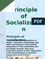 Principle of Socialization