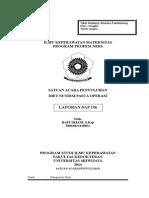 SAP OK RAFI.doc