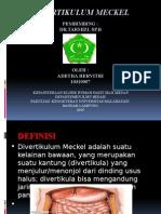 Diventrikulum Meckel
