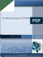0vy4s_Profil judetul Covasna_actualizat 28.08.2012.pdf