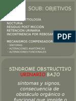 Sindrome-obstructivo- Urinario Bajo