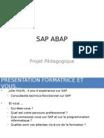 1 - Le Metier Developpeur SAP