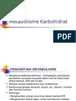 c1.Metabolisme Karbohidrat