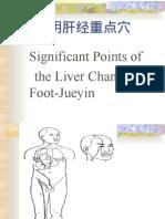 (22)  liver