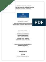 Primera Entrega Proceso Estrategico Subsector