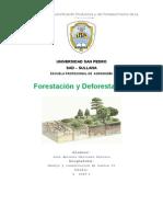 Forestación y deforestación
