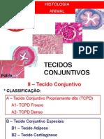 Histologia 02 CONJUNTIVOS