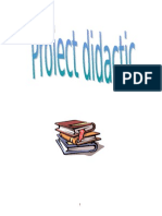 proiectlbromana_atribut (2)