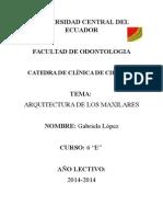 ARQUITECTURA  DE LOS MAXILARES.docx