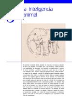La Inteligencia Animal