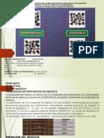 Plan de Negocios Para Exponer Diapositiva