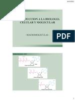 2-Macromoleculas