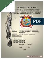 Derecho Municipal Estructura Basica g. Regional