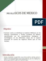 Moluscos de México