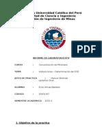 informe de laboratorio de concentracion de minerales