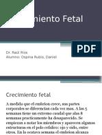 Crecimiento Fetal peso talla