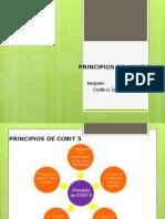 Principios de Cobit 5