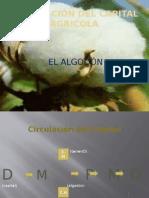 CIRCULACIÓN DEL CAPITAL AGRICOLA
